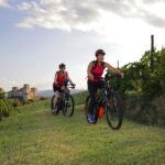 In bici a Torrechiara